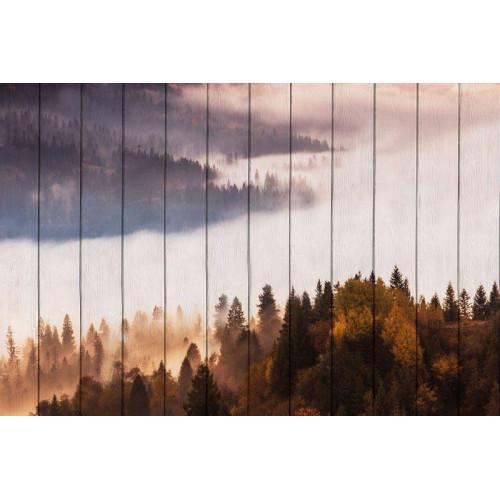 Картина на досках Лесной пейзаж