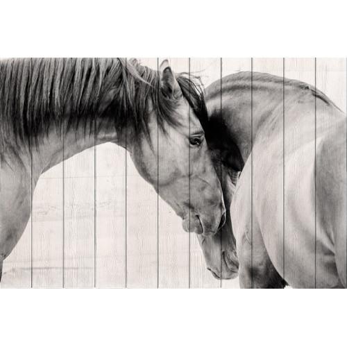 Картина на дереве Две лошади