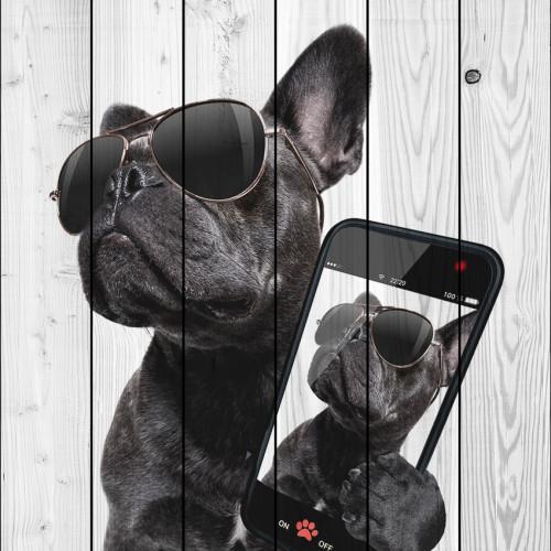 Картина на дереве Собака с телефоном