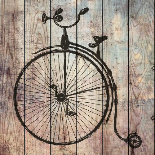 Картина на досках Цирковой велосипед
