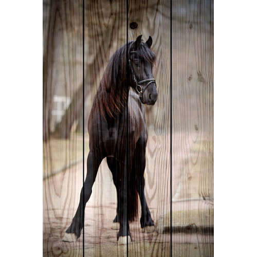 Картина на дереве Лошадь на дороге